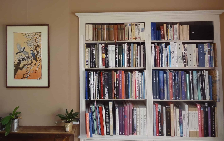 La bibliothèque de Serge